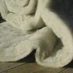 aislantes ecológicos, aislante-de-lana-de-oveja-en-rollo