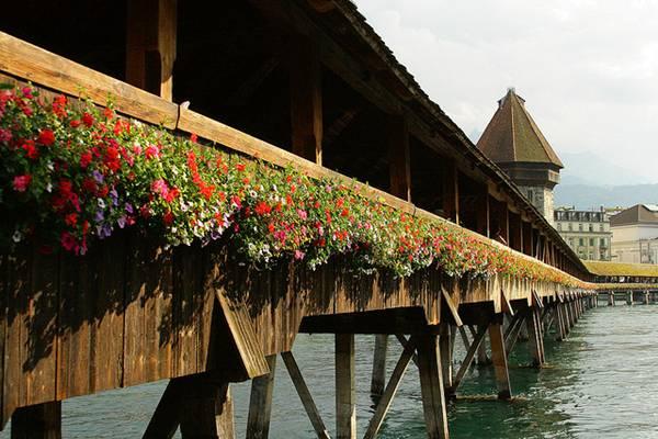 Legendario-puente-de-madera-en-China1