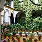 Patios de Córdoba, Andalucía.