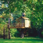 Casa en el arbol, tree house