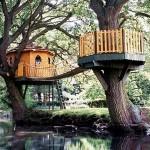 Casa-arbol con puente y balcón