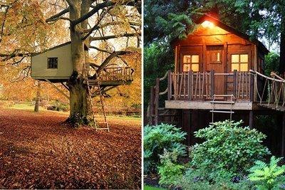 60 evocadoras casas en el rbol casas ecol gicas - Casa en el arbol ...