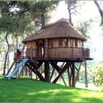 Casa de madera en el árbol con porche y tobogán