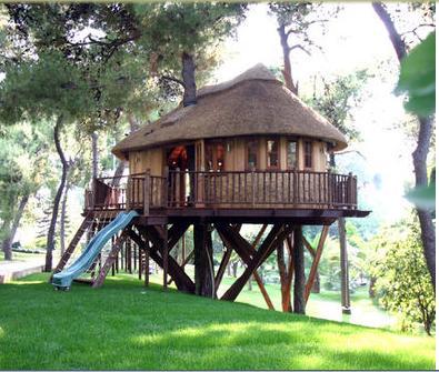 casa de madera en el rbol con porche y tobogn