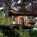 casa madera en el arbol
