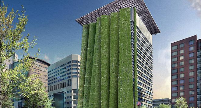 Paredes-verdes-disminuyen-la-contaminacion-mas-que-los-arboles