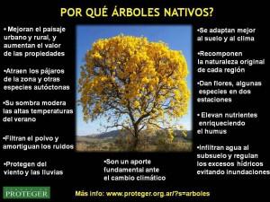 sembrar árboles locales