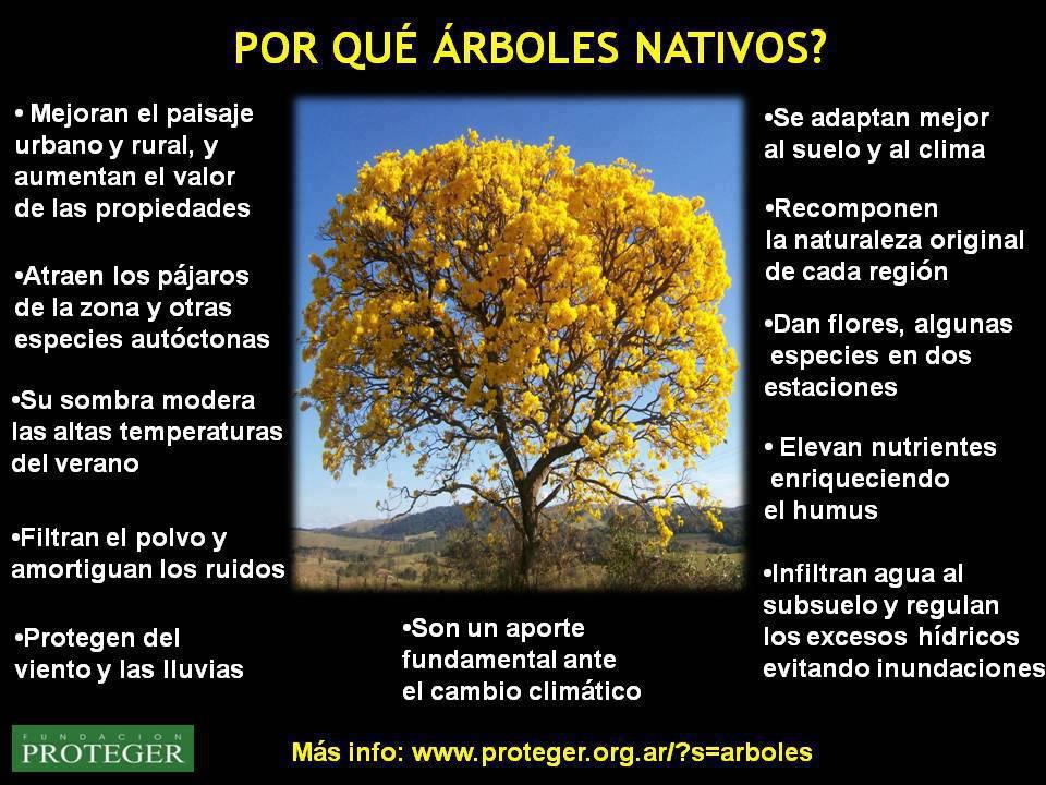 Qu rboles sembrar en casa casas ecol gicas for Arboles para plantar en invierno