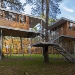 Casa en el árbol por Baumraum