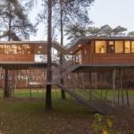 sostenibilidad, casa en el árbol