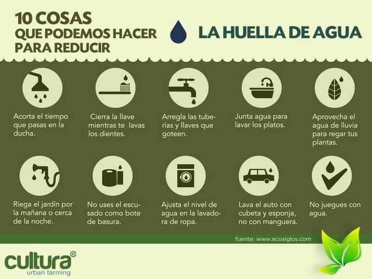 ahorrar agua 10 consejos b sicos casas ecol gicas