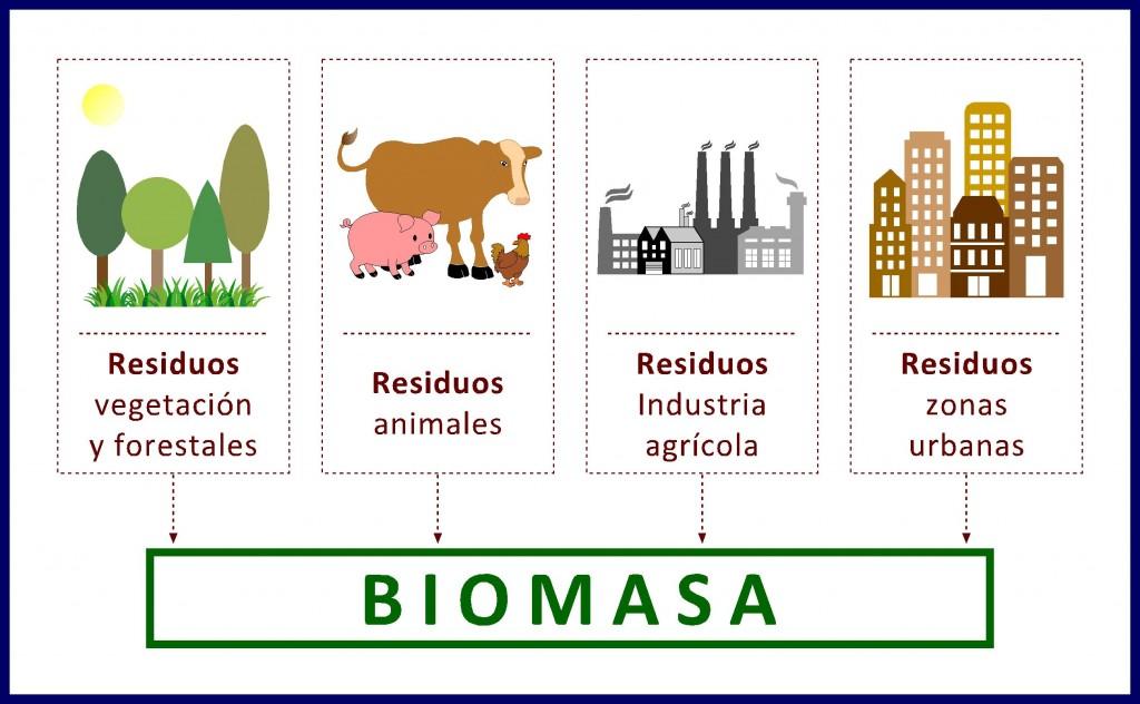 la energía de la biomasa