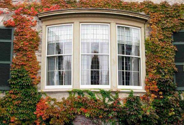 Qu ventanas elegir aluminio pvc o madera casas ecol gicas for Ventanas de madera precios en rosario