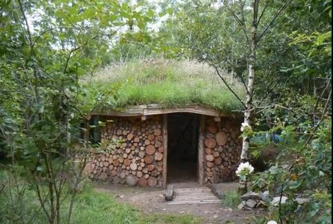 Qu son los techos verdes pros y contras casas ecol gicas for Cual es el techo mas economico para una casa