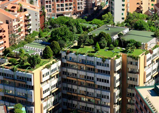 Qu son los techos verdes pros y contras casas ecol gicas for Tipos de tejados de casas
