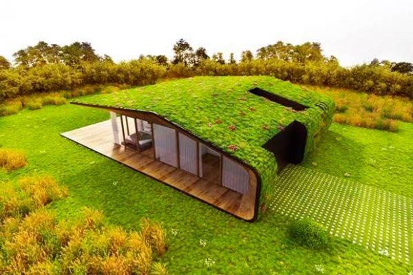 Desde la perspectiva del consumo energético, cubiertas vegetales son unas de las soluciones de mayor impacto que existen.